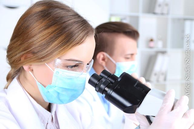 Gentechnisch veränderte T-Zellen können bösartige Zellen zerstören.